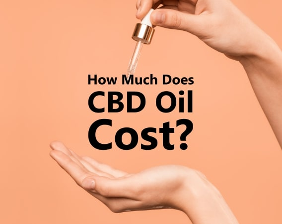 How Much Does Hemp CBD Oil Cost?
