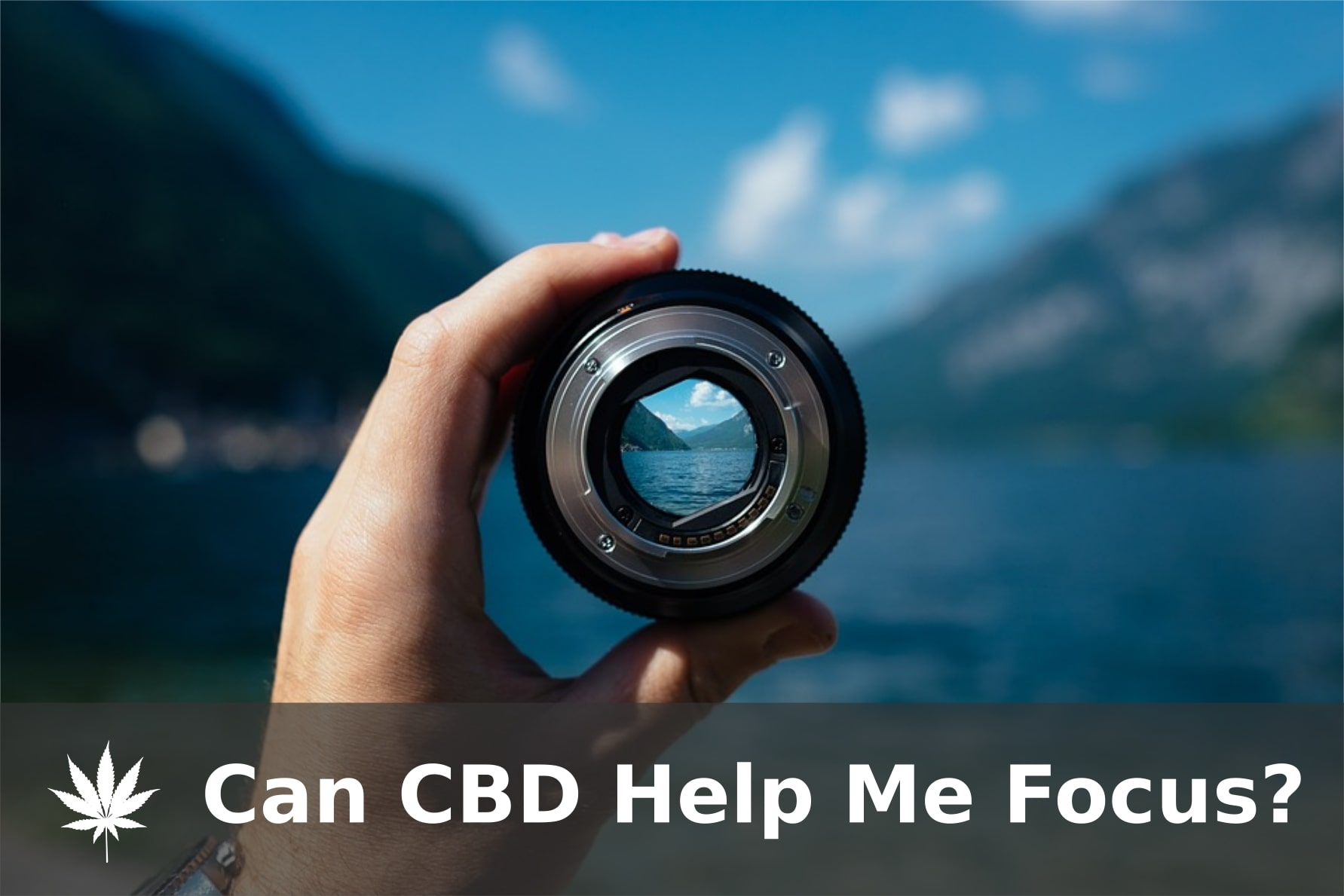 Can CBD Help Me Focus?